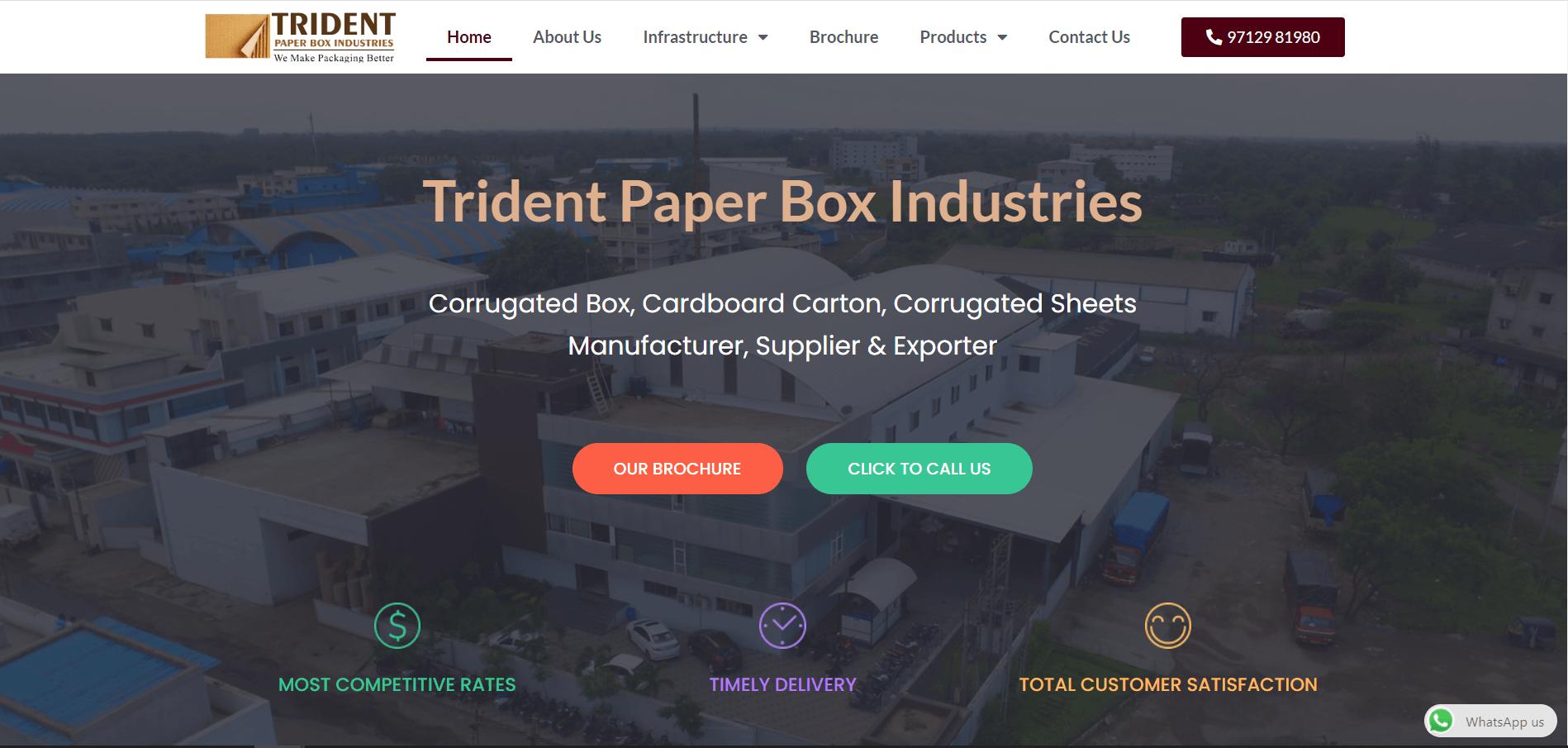 india website design client